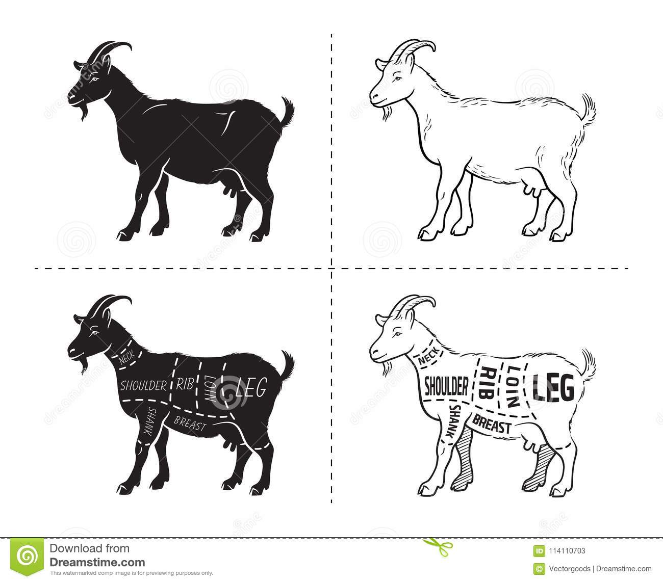 Excellent Vector Illustration Goat Cuts Diagram Or Chart Goat Black Letkol Mohammedshrine Wiring Cloud Letkolmohammedshrineorg